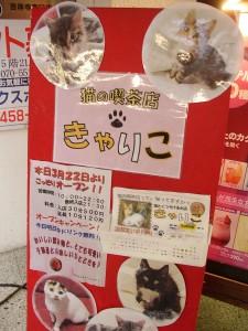 猫とくつろげる喫茶店jきゃりこ