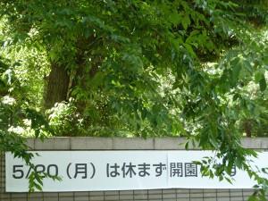 明日2013年5月20日、井の頭動物園は開園