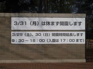 井の頭公園の2014年春の予定
