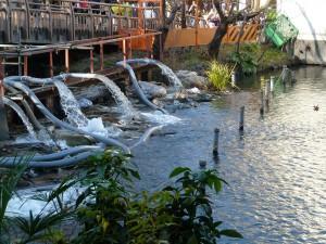 かい掘りの水が出ているボート池