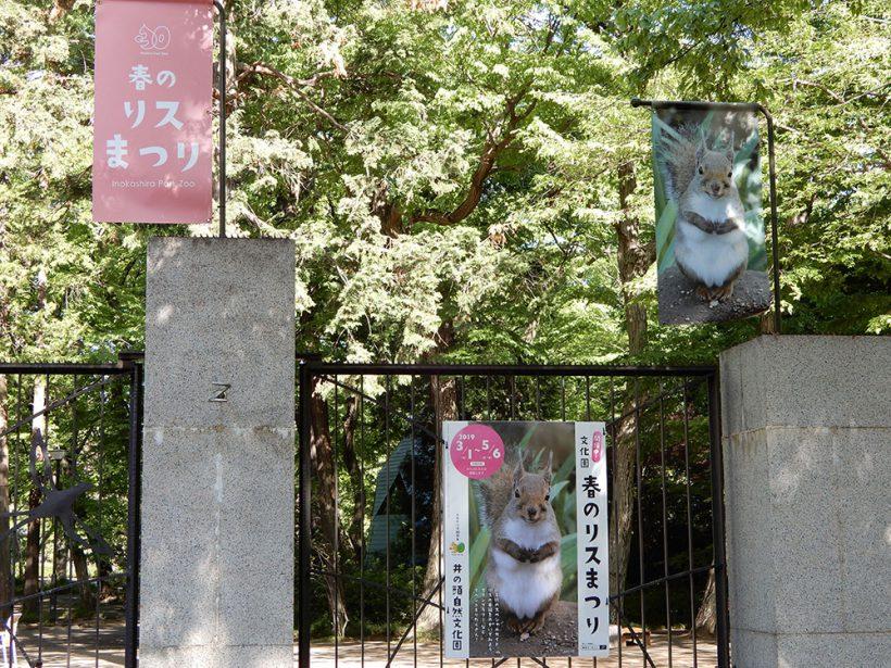 2019年4月の井の頭動物園